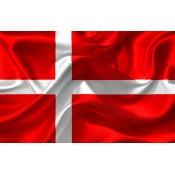 Q. Dinamarquês (1)