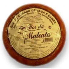 Q. Flor da Malcata